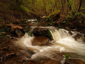 South Fork Walla Walla River