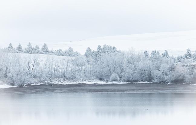 Winter - Bennington Lake