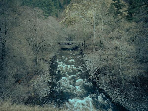 South Fork Walla Walla River - The 'Vera' look